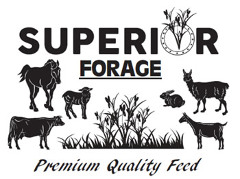 superior forage