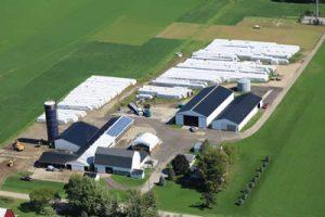 Lauwers Alfalfa & Straw Farm